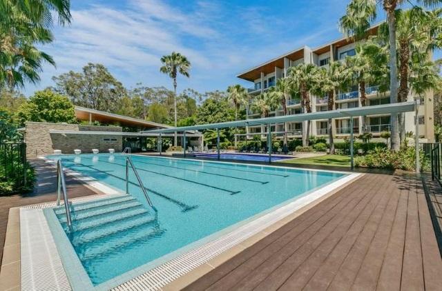 Casuarina unit 12 sphere gold coast - Griffith university gold coast swimming pool ...